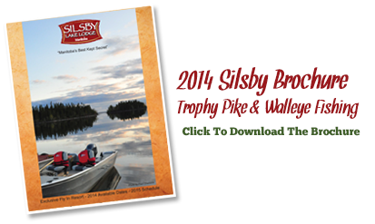 2013 Silsby Brochure
