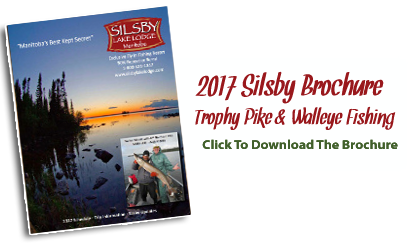 2015 Silsby Brochure