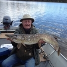 Don S. with a Master Angler Northern Pike from Cuddle Lake.