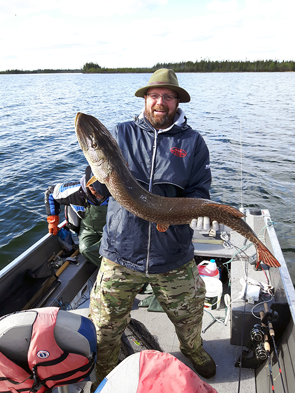 Bill MacDougall with one of his multiple trophy Pike in early June
