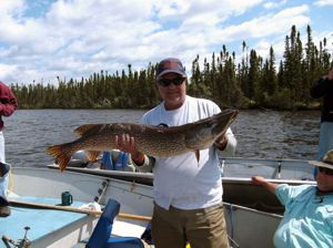 Warren Peterson with 44 inch Northern from Whitley Lake