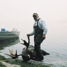 Silsby Lake bull Moose