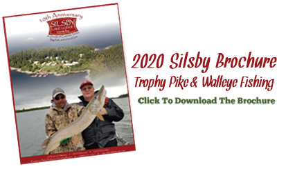 2020 Silsby Brochure