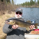 The Rayburg group with a big Walleye from Cuddle Lake